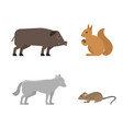 different wild animals dangerous vertebrate canine vector image