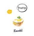 german dumpling knodel watercolor vector image vector image