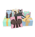 gray cat and a lot of gifts vector image vector image