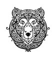 ornate bear face sketch for your design vector image