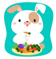 rabbit cartoon eating vegetable vector image