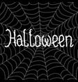 the inscription of halloween on a cobweb vector image vector image