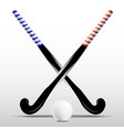 Two sticks for field hockey and ball vector image vector image