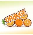 abstract orange vector image vector image