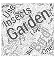 Dealing with Garden Pests Word Cloud Concept vector image vector image
