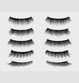 false lashes realistic eyelashes fake thick lash vector image vector image