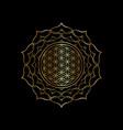 flower life yantra mandala in golden lotus vector image vector image