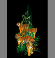 four graphic tigers standing walking and roaring vector image vector image