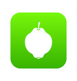quince fruit icon digital green vector image