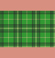 seamless plaid green tartan check fabric texture vector image vector image