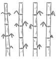 set of bamboos vector image