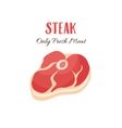 Steak in cartoon style vector image vector image