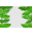 summer jungle palm leaf frame vector image