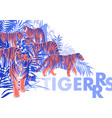 graphic design with tigers standing walking and vector image vector image