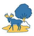 reindeer animal cartoon vector image vector image