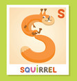 s is for squirrel letter s squirrel cute vector image
