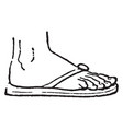 Sandal was usually a sole of hide vintage vector image