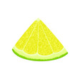 slice of lime or lemon isolated vector image