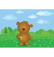 Teddy bear with flower and gift on meadow vector image vector image