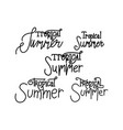 tropical summer script text design template vector image