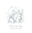 christmas cute bears vector image vector image