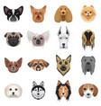 dog heads logo set emblem vector image vector image