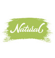 hand drawn lettering natural on a paint brush vector image vector image
