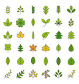 leaves and branch icon set filled outline design vector image
