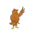 Owl Standing Pointing Wing Cartoon vector image vector image
