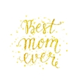 Best mom ever gold lettering with spray vector image
