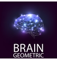 Brain geometric shapes vector image