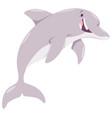 cartoon dolphin animal character vector image
