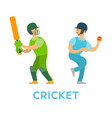 cricket players people with bat and ball team vector image