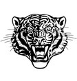 head roaring tiger black and white vector image vector image