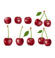 set of realistic ripe cherry with leaves vector image