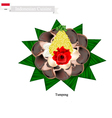 Tumpeng or Indonesian Cone Shaped Rice vector image vector image