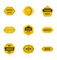 golden retro badges icons set flat style vector image