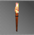 burning wood torch vector image vector image