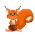Cute character squirrel with nuts vector image