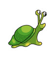 cute small whole green snail with small shell vector image vector image