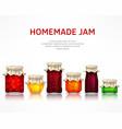 homemade jam poster vector image