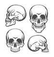 human skull front and side view set vector image vector image