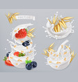 oatmeal oat grains strawberry blueberry and milk vector image vector image