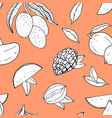seamless pattern with mango line drawing vector image vector image