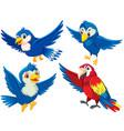 set bird character vector image