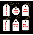 Set of white tags vector image vector image