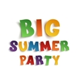 Big summer party poster template on white vector image