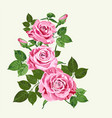 bright pink roses on pale green background vector image vector image