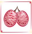 logo for carissa carandas fruit vector image vector image