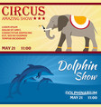 set of circus and dolphin show banner circus and vector image vector image
